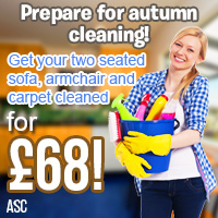 dry steam carpet cleaning service